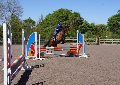 Nicky Southall Show jumping training