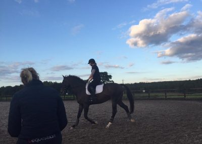 Nicky Southall flatwork clinic