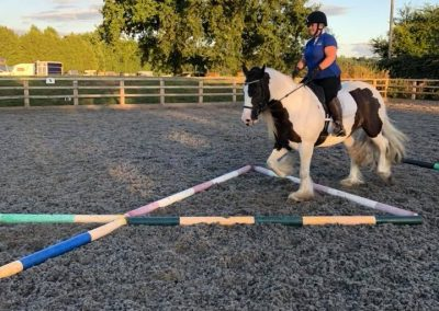 Nicky_Southall_equestrian_training_gymnastic poles
